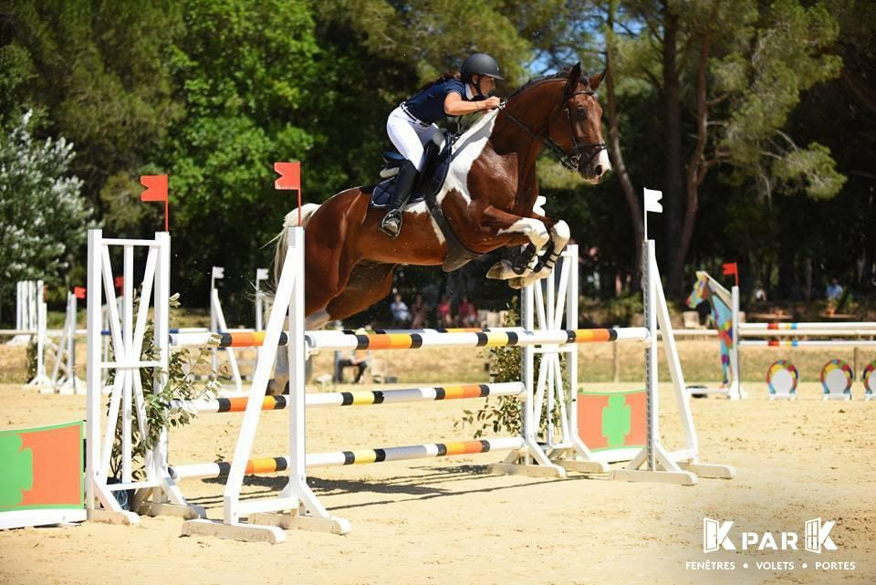 kpark jumping cheval equitation